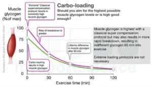 Glucógeno muscular